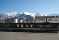 西藏大学招生网
