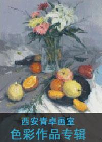 【全国十佳画室】西安青卓画美术培训学校色彩作品专辑