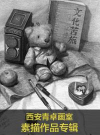 【全国十佳画室】西安青卓画室素描静物作品专辑