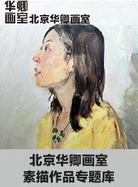 北京华卿画室素描作品专题库