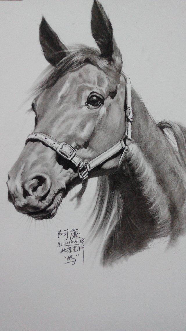 关于马的简笔画图片12张第10张自慰的女生有瘾图片