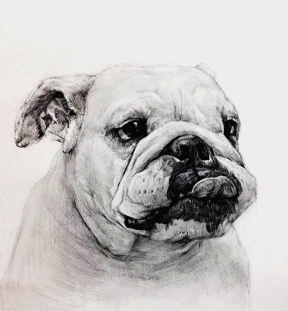 素描-动物篇_画室作品投稿 - 51美术高考网