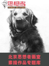 北京思想者画室素描作品专题