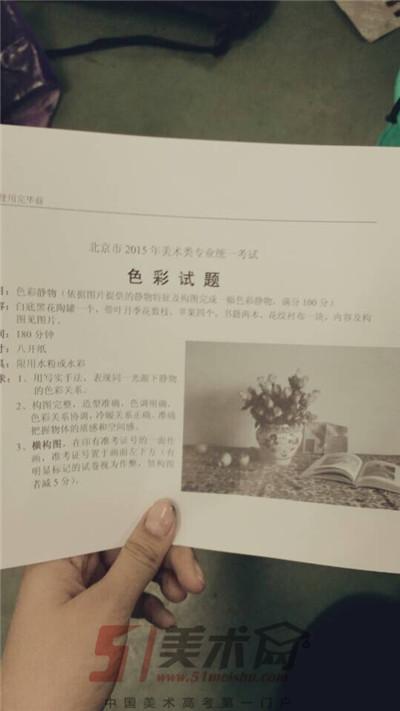 2015年北京美术联考色彩考题
