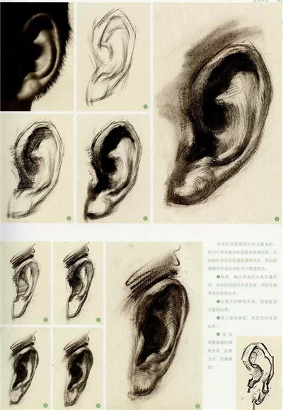 高考素描头像画法步骤图片