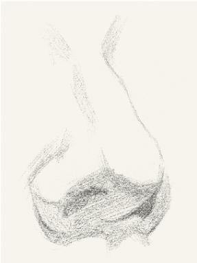 图片48.png