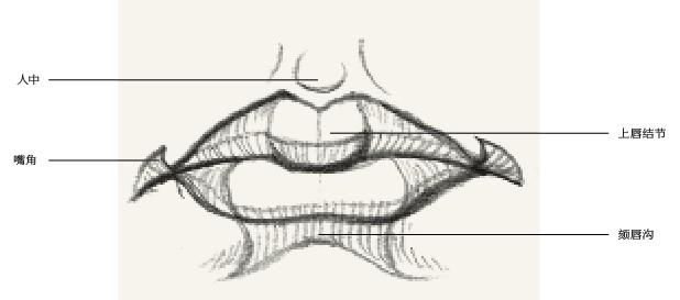 铅笔画教程步骤图解嘴部