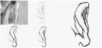 【京美考河北校区】人物速写中耳朵的表现方法