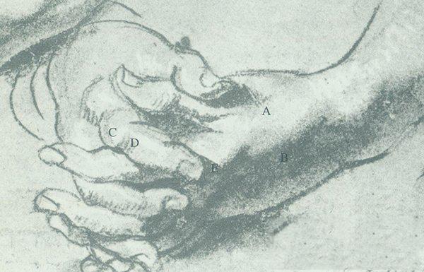 向鲁本斯学习如何处理手的体块关系