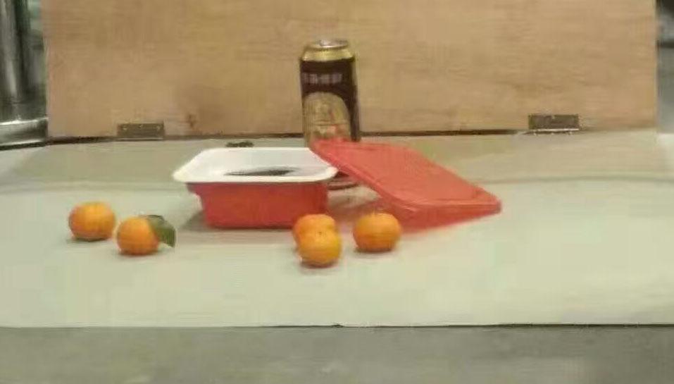 一瓶易拉罐,5个橘子图片