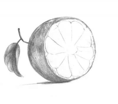 一,素描橙子的绘画步骤1,首先仔细观察橙子的外形,画出橙子的
