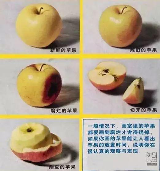 51美术播报 > 正文  切开的水果:可以看到水果的水粉,还有苹果籽,记得图片
