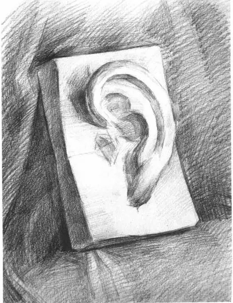 素描�^像局部耳朵