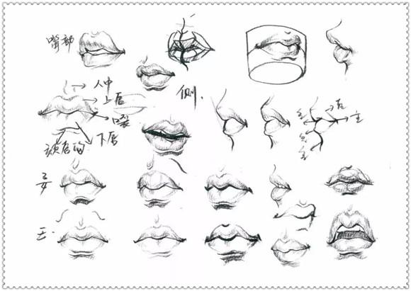 头部脸型与发型表现注意事项:   1.了解五官结构,准确把握面部五官比例的划分。   2.抓住男女老少五官与头部脸型的特征区别。   3.准确把握面部五官不同视角的透视变化。   4.概括发型特征,对头发起止点进行分组刻画。