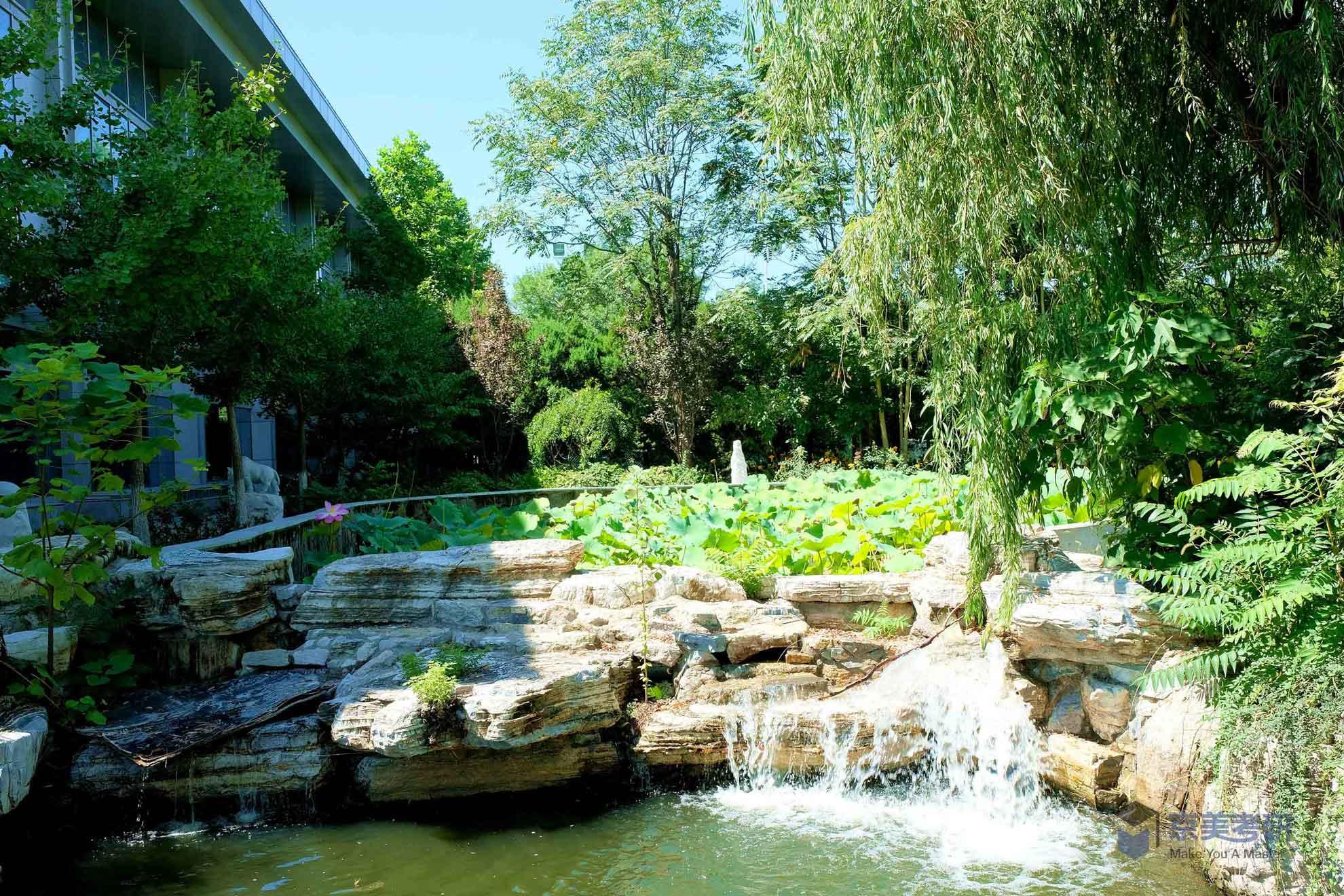 园区环境4.jpg
