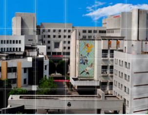 新疆艺术学院招生网